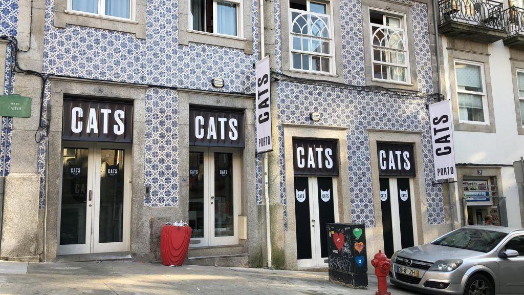 Cats Hostel Porto