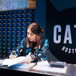 cats hostel oporto 2